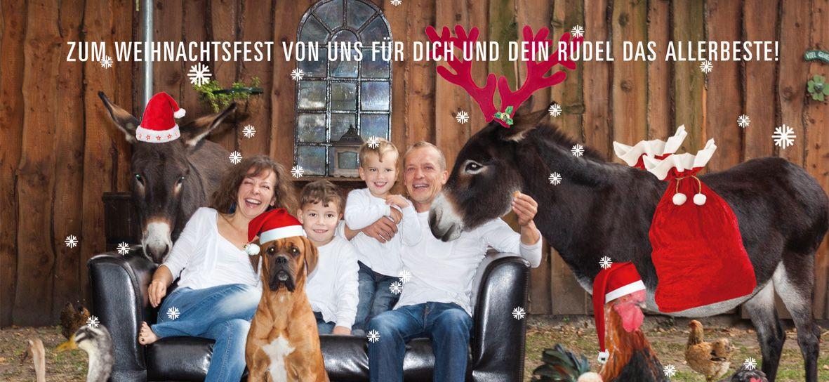 Hundefriseur-Ausbildung-Weihnachtsgruesse